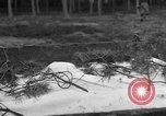 Image of Burial for Wöbbelin Camp victims Ludwigslust Germany, 1945, second 1 stock footage video 65675068334