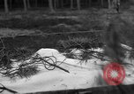 Image of Burial for Wöbbelin Camp victims Ludwigslust Germany, 1945, second 2 stock footage video 65675068334