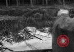 Image of Burial for Wöbbelin Camp victims Ludwigslust Germany, 1945, second 7 stock footage video 65675068334