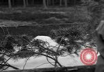 Image of Burial for Wöbbelin Camp victims Ludwigslust Germany, 1945, second 9 stock footage video 65675068334