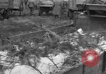 Image of Burial for Wöbbelin Camp victims Ludwigslust Germany, 1945, second 10 stock footage video 65675068334