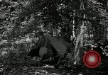 Image of Bivouac Area United States USA, 1942, second 4 stock footage video 65675068403