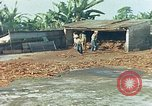Image of Indian workers Guatemala, 1946, second 3 stock footage video 65675068505