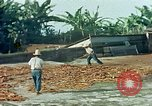 Image of Indian workers Guatemala, 1946, second 10 stock footage video 65675068505