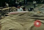Image of Indian workers Guatemala, 1946, second 4 stock footage video 65675068507