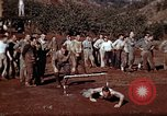 Image of Ranger combat training Hawaii USA, 1942, second 7 stock footage video 65675068511