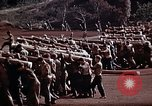 Image of Ranger combat training Hawaii USA, 1942, second 12 stock footage video 65675068516