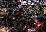 Image of Operation Prairie III Vietnam, 1967, second 12 stock footage video 65675068726
