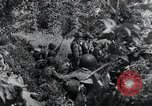 Image of 101st Airborne Division Saint Marcouf France, 1944, second 2 stock footage video 65675068779