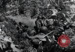 Image of 101st Airborne Division Saint Marcouf France, 1944, second 4 stock footage video 65675068779