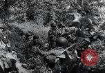 Image of 101st Airborne Division Saint Marcouf France, 1944, second 6 stock footage video 65675068779