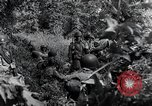 Image of 101st Airborne Division Saint Marcouf France, 1944, second 7 stock footage video 65675068779