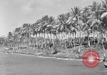 Image of 8th Fighter Group Morotai Island Indonesia, 1944, second 9 stock footage video 65675068810