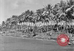 Image of 8th Fighter Group Morotai Island Indonesia, 1944, second 10 stock footage video 65675068810