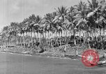 Image of 8th Fighter Group Morotai Island Indonesia, 1944, second 11 stock footage video 65675068810