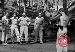 Image of 8th Fighter Group Morotai Island Indonesia, 1944, second 8 stock footage video 65675068811