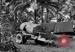 Image of 8th Fighter Group Morotai Island Indonesia, 1944, second 4 stock footage video 65675068812