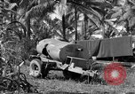Image of 8th Fighter Group Morotai Island Indonesia, 1944, second 6 stock footage video 65675068812
