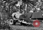 Image of 8th Fighter Group Morotai Island Indonesia, 1944, second 7 stock footage video 65675068812
