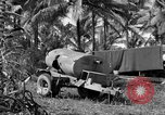 Image of 8th Fighter Group Morotai Island Indonesia, 1944, second 8 stock footage video 65675068812