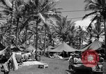 Image of 8th Fighter Group Morotai Island Indonesia, 1944, second 12 stock footage video 65675068813