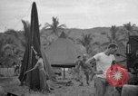 Image of 8th Fighter Group Leyte Philippines, 1944, second 10 stock footage video 65675068916