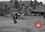 Image of 8th Fighter Group Leyte Philippines, 1944, second 11 stock footage video 65675068916