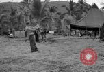 Image of 8th Fighter Group Leyte Philippines, 1944, second 12 stock footage video 65675068916