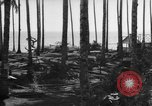 Image of 8th Fighter Group Leyte Philippines, 1944, second 4 stock footage video 65675068918