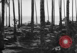 Image of 8th Fighter Group Leyte Philippines, 1944, second 5 stock footage video 65675068918