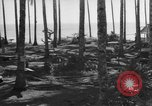 Image of 8th Fighter Group Leyte Philippines, 1944, second 7 stock footage video 65675068918