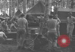 Image of 8th Fighter Group Morotai Island Indonesia, 1944, second 5 stock footage video 65675068921