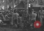 Image of 8th Fighter Group Morotai Island Indonesia, 1944, second 7 stock footage video 65675068921