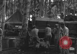 Image of 8th Fighter Group Morotai Island Indonesia, 1944, second 11 stock footage video 65675068921