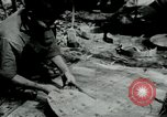Image of Operation Junction City South Vietnam, 1967, second 12 stock footage video 65675068938