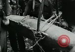 Image of Operation Junction City South Vietnam, 1967, second 11 stock footage video 65675068940
