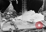 Image of Operation Junction City South Vietnam, 1967, second 3 stock footage video 65675068951