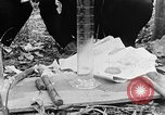 Image of Operation Junction City South Vietnam, 1967, second 4 stock footage video 65675068951