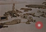 Image of Fallen United States Marines at Betio Tarawa Tarawa Gilbert Islands, 1943, second 9 stock footage video 65675069063