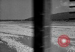 Image of lumber yard Formosa Taiwan, 1945, second 10 stock footage video 65675069166
