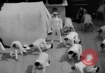 Image of Navy personnel Pacific Ocean, 1935, second 6 stock footage video 65675069209