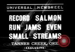 Image of salmon fish Tanner Creek Oregon USA, 1937, second 4 stock footage video 65675069215