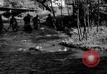 Image of salmon fish Tanner Creek Oregon USA, 1937, second 8 stock footage video 65675069215