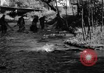 Image of salmon fish Tanner Creek Oregon USA, 1937, second 9 stock footage video 65675069215