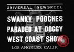 Image of National Winter dog show Los Angeles California USA, 1937, second 5 stock footage video 65675069217