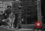 Image of National Winter dog show Los Angeles California USA, 1937, second 11 stock footage video 65675069217