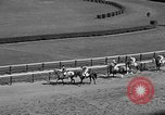 Image of War Admiral Aqueduct New York USA, 1938, second 6 stock footage video 65675069240