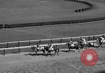 Image of War Admiral Aqueduct New York USA, 1938, second 7 stock footage video 65675069240