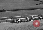 Image of War Admiral Aqueduct New York USA, 1938, second 8 stock footage video 65675069240