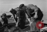 Image of sturgeon fish Russia, 1961, second 7 stock footage video 65675069265